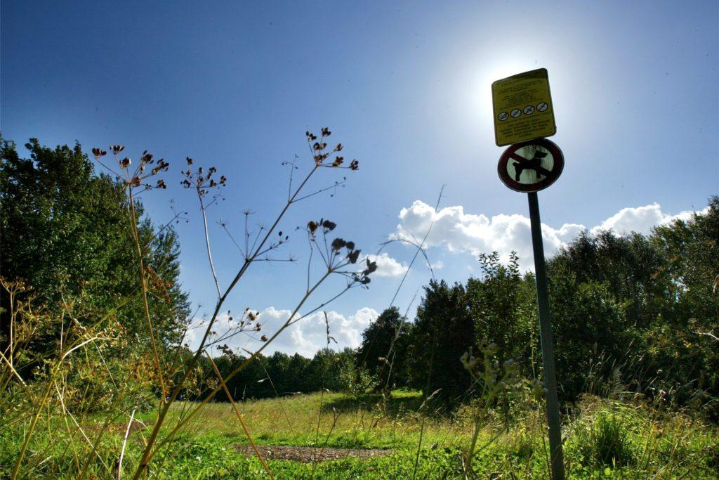 Die Bolmke ist ein Naturparadies unmittelbar südlich der Dortmunder Innenstadt.