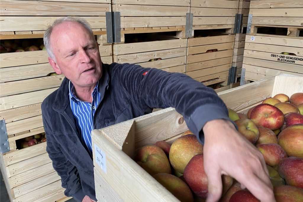 Die geernteten Äpfel werden in riesigen Holzkisten gekühlt gelagert, damit sie auch in Wochen noch frisch sind.