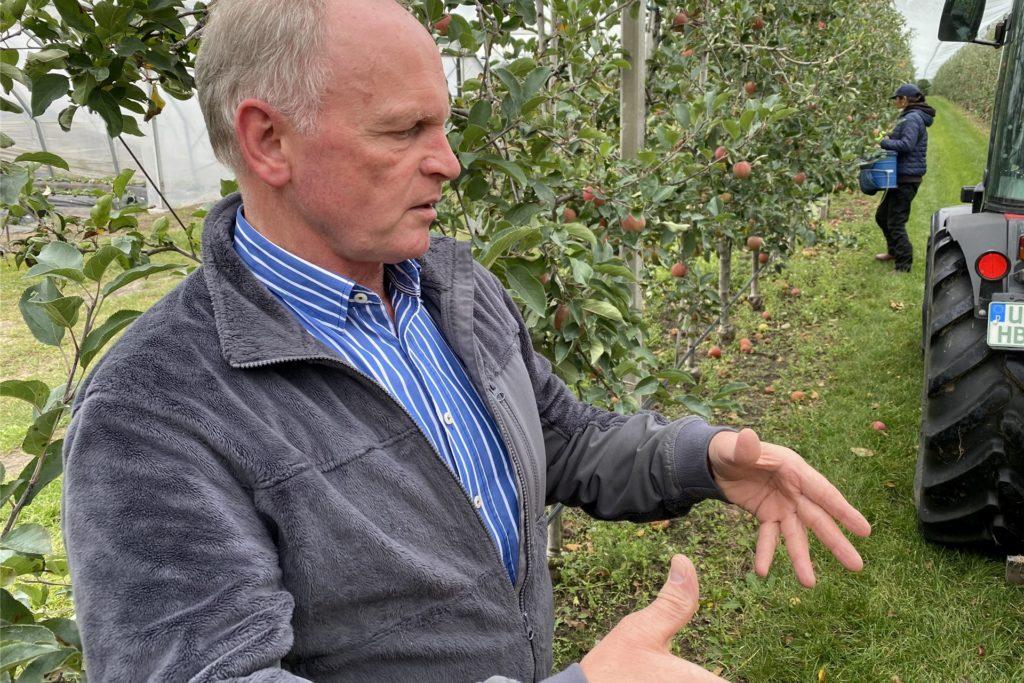 Vieles müssen Hubert Bleckmann und die Mitarbeiter beachten, um Äpfel in bester Qualität anbieten zu können - auch nach sehr trockenen Sommern.