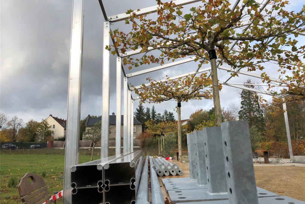 Das Zelt im Biergarten kann mit seiner Höhe von 5,50 Metern sogar die Platanen überdecken. Nun bleibt das Zelt aber erst einmal leer stehen.