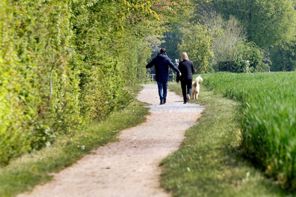 Spaziergänger mit Hund in Overberge: Kleine Völkerwanderungen waren nicht festzustellen.