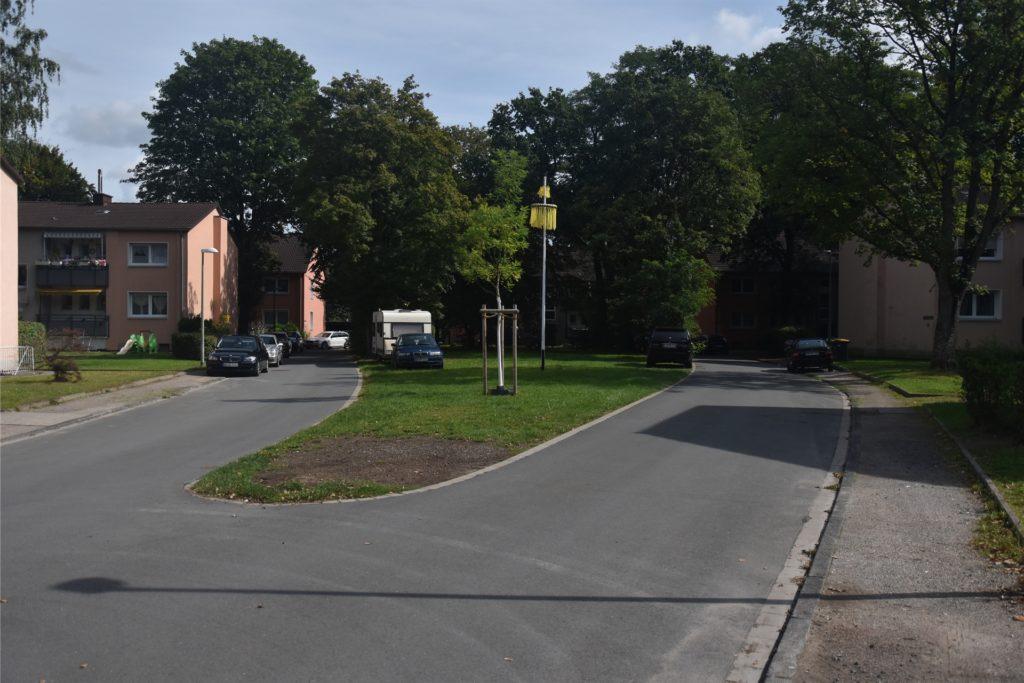 Auf dieser Grünfläche sollen laut Vorlage mehrere Autostellplätze entstehen, die von Eltern genutzt werden können.